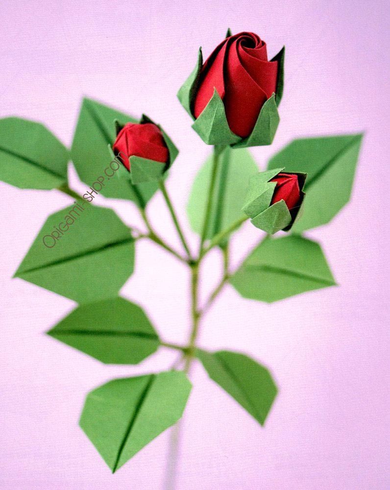 Beginners Simple Origami Flowers