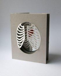 'Cardiothoracic' tunnel book/card: half-closed