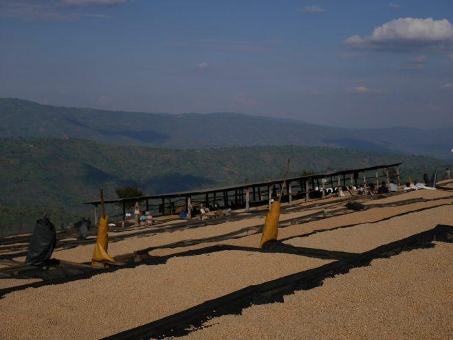 Rwanda Musasa Ruli