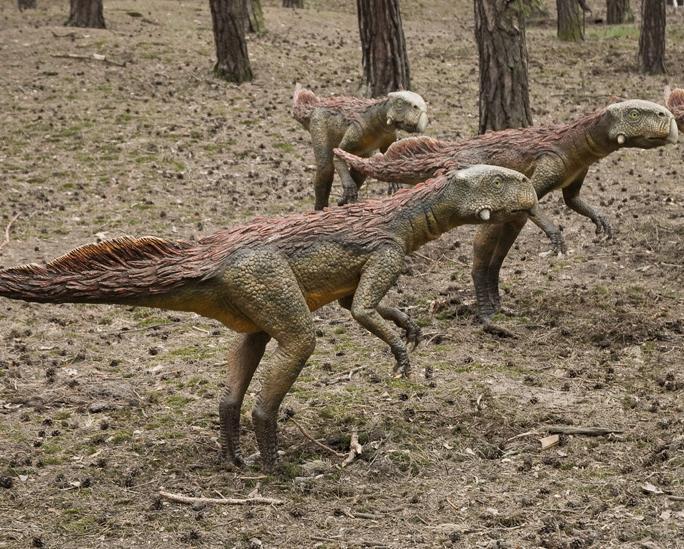 Фотки Динозавры