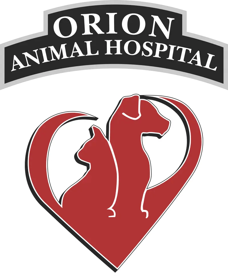 Orion veterinarian