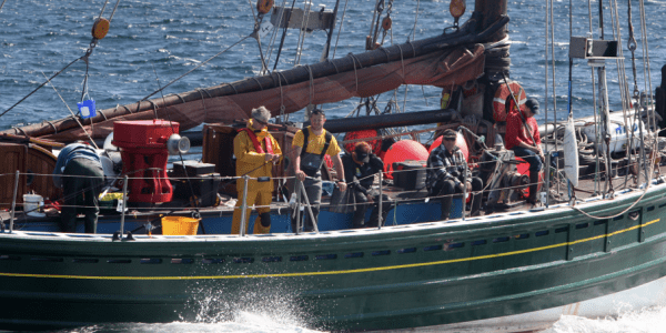 Stromness to host European Sea Angling Championships