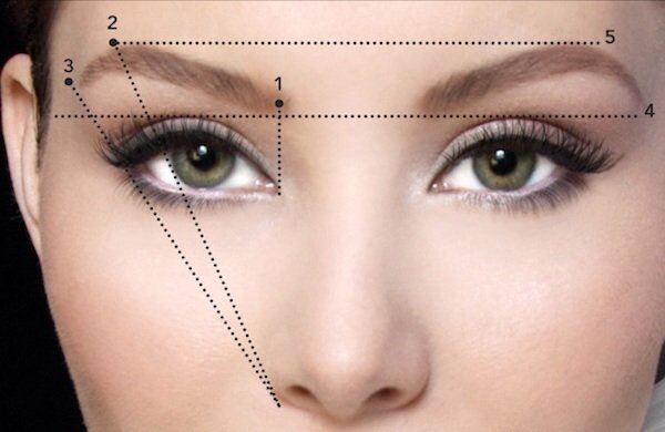Eyebrow Architecture