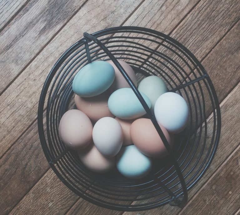 11 Easter Egg Hunts in the Orlando Area