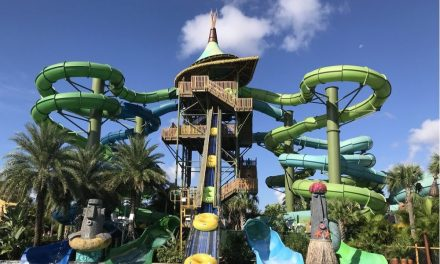 7 Water Parks in Orlando We Recommend Visiting with the Kids