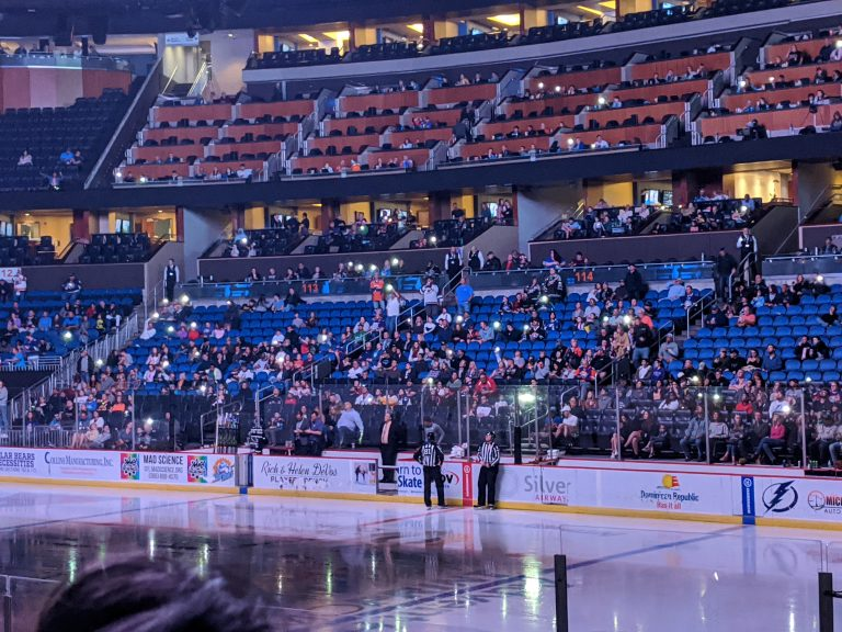 5 Reasons Why You Should Take Your Kids to a Solar Bears Game