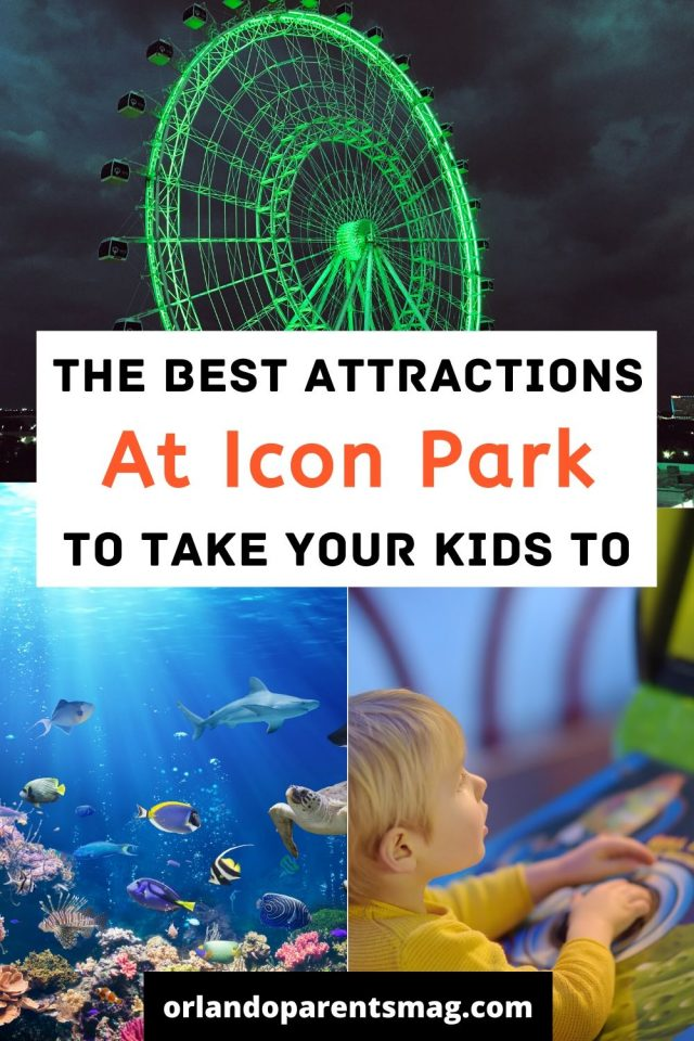 things to do at icon park
