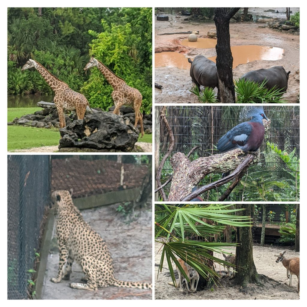 orlando zoo