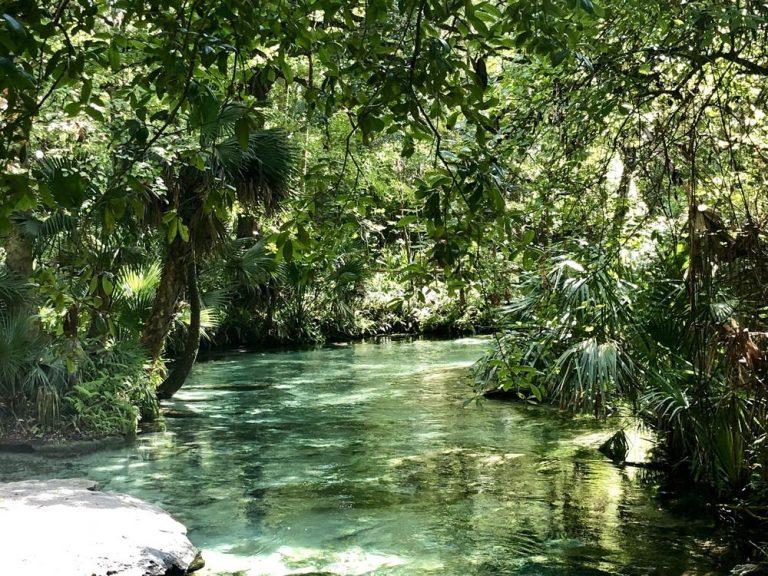 Natural Springs Near Orlando