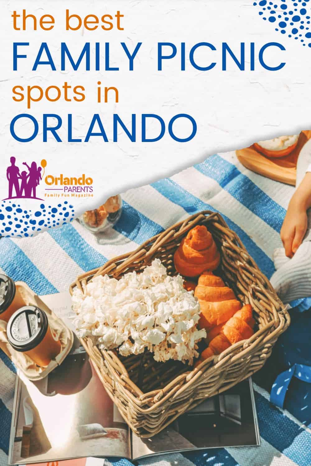 parks to have a picnic in orlando