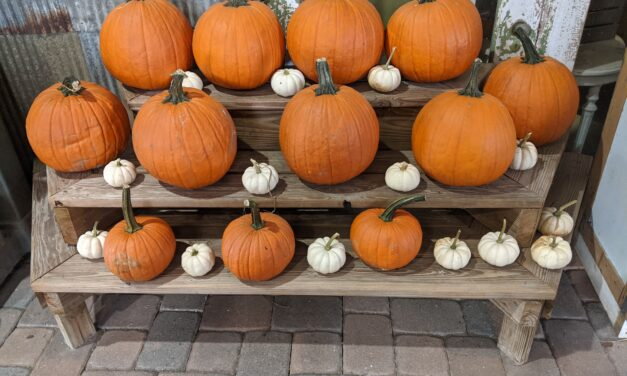 Fall Festivals in Orlando