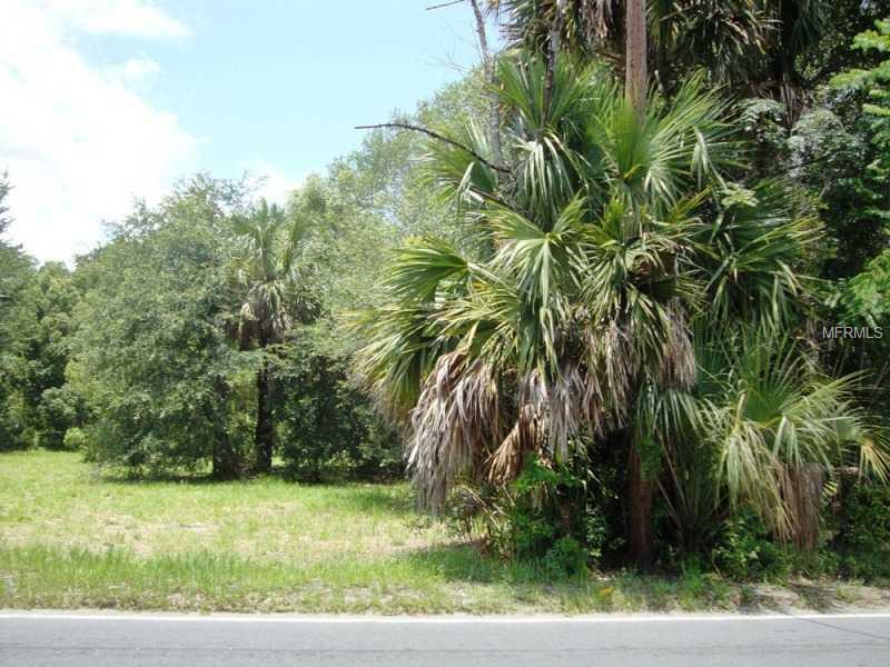 SR 46/ 435 RD,MT PLYMOUTH,Florida 32776,Land,SR 46/ 435,O4827433