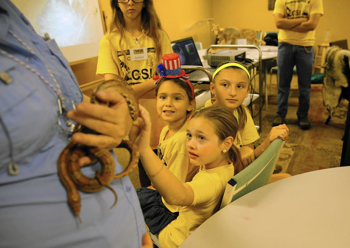 Cub Scout Campers Get To Shoot Wire Electric Circuits