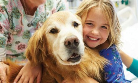 Unleashing HOPE | Stem cell therapy for pets