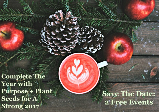 Complete The Year With Purpose + Plant Seeds For A Strong 2017