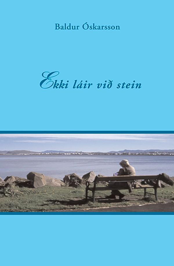 ekki_lair_vid_stein