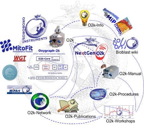 Image depiciting the interconnectivity of the Oroboros Ecosystem