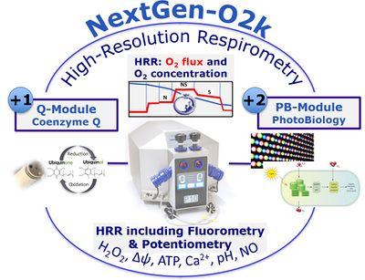 schematic of NextGen-O2k and modules