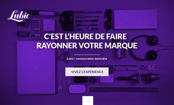 purple-website03