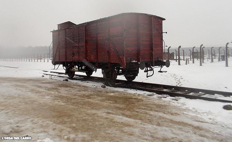 birkenau-vagoni-della-morte