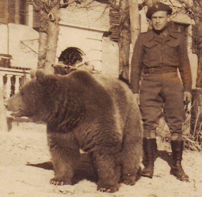 Wojtek Orso soldato