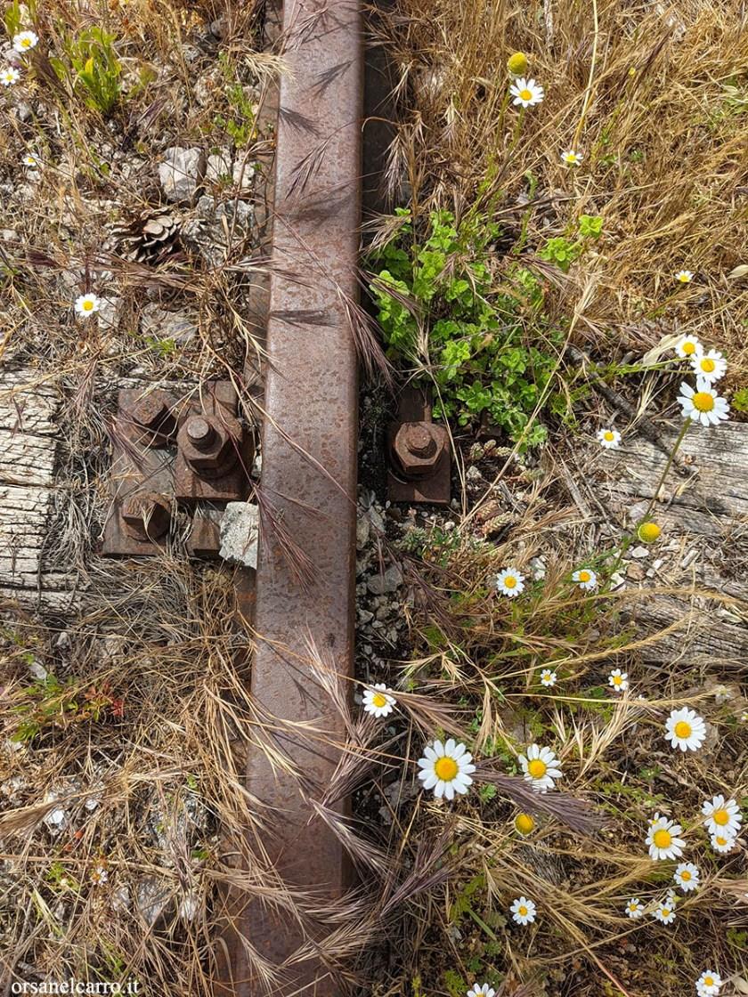 Trekking lungo i binari abbandonati della ferrovia del Vallo di Diano