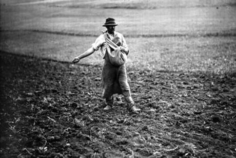 contadino