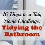Day 8 of The 10 Days to a Tidy Home Challenge: Tidying the Bathroom