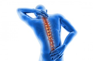 JOINT REPLACEMENT FOR THE SPINE