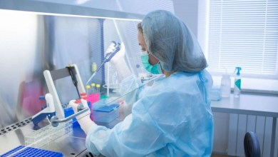 Photo of Prenatal stem cell treatment improves mobility issues caused by spina bifida