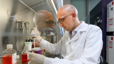 Photo of Researchers have Developed a Protein-Loaded Antimicrobial Hydrogel to Treat and Prevent Bone Infections