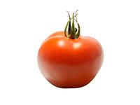 pomodoro-casalingo