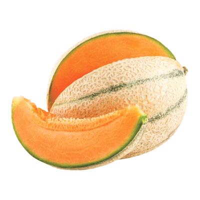 melone pane cantalupo