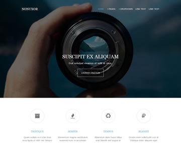 Nonuxor Website Template   Free Website Templates   OS Templates Free Website Template Nonuxor