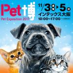 Pet博2017 大阪