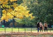 ニューヨークの紅葉の名所「セントラルパーク」