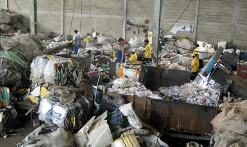 Do lixo à preservação ao meio ambiente