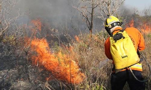 Agosto, mês do desgosto, e das queimadas na Amazônia
