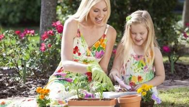 Кога да поливаме цветята
