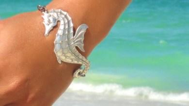 Амулет с морско конче е талисман за пари и късмет