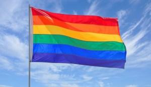 Causa-controversia-app-que-cura-gays[1]