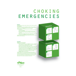Choking Emergency Safety Poster