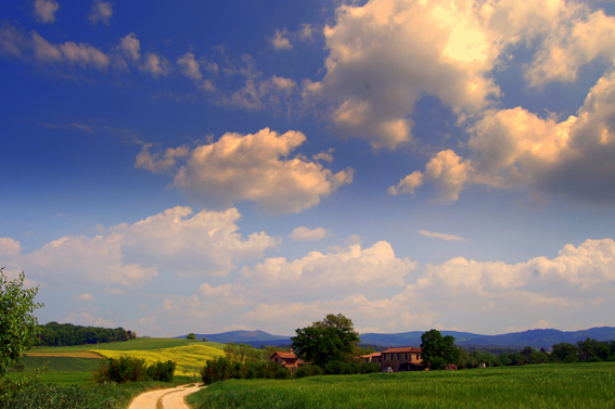 Typical landscape in Tuscany