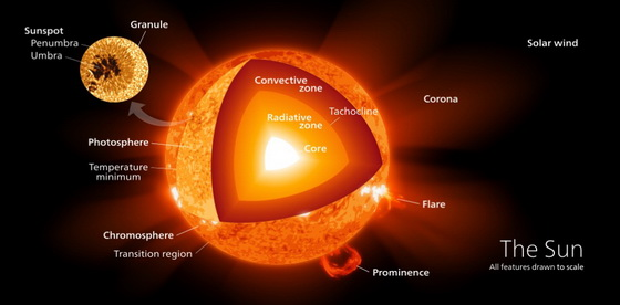The Discovery, The Composition And The Structure Of Our Solar System