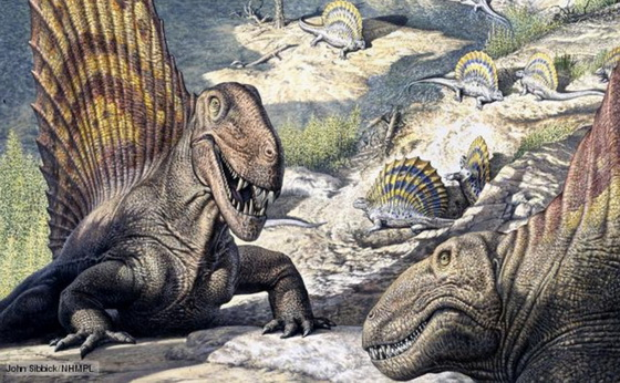 Synapsid reptiles