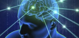 Rhythm of breathing affects memory and fear