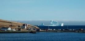 Newfoundland surprise visit