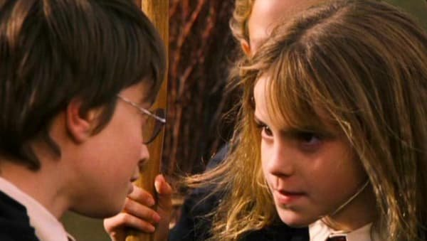 060 the-harry-potter-and-hermione
