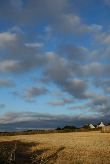 105 Brittany-fields