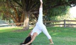 Yoga estiramiento reductiva meditacion relajacion posturas sanacion conexion cuerpo mente Instructora Maritza Rosales 043